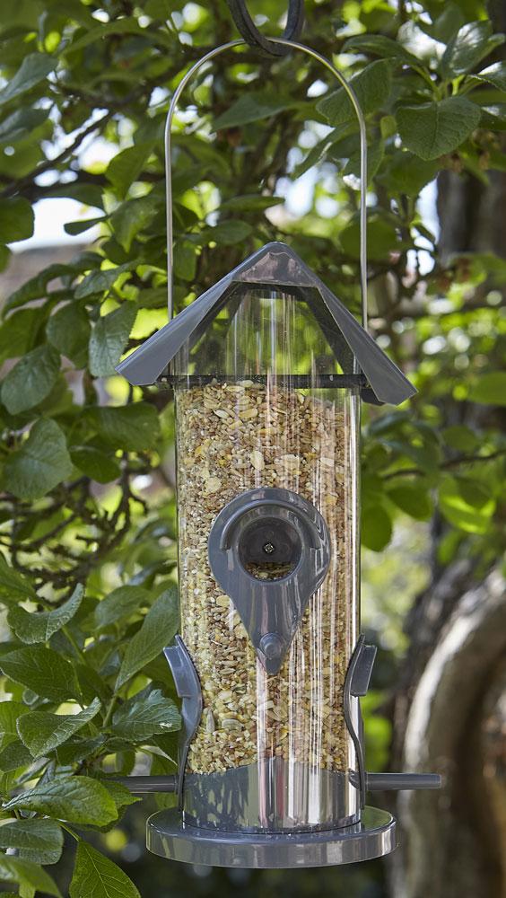 Everday 4 Feeding Port Seed Bird Feeder - UK Garden Products